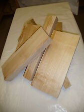 Eschenholz Zuschnittstücke 5kg