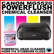 Canon mg5520: STAMPANTE HEAD CLEANER-Ugello Flush-STRIATA stampa FIX