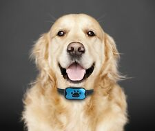 ISOTRONIC Anti Bell Hundehalsband Erziehungshalsband mit Ton und Vibration