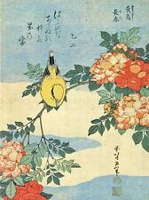 PITTURA GIAPPONESE Uccello Fiori Floreale Arte Poster Stampa lv2607