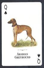 Single Dog Tomas Markevicius Art Trade Playing Card Saluki Sloughi Natural World