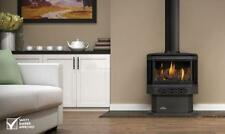 Gas-Fired Heating Stove Heating Stoves