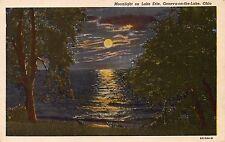 GENEVA ON THE LAKE OHIO MOONLIGHT ON LAKE ERIE~PRE LINEN POSTCARD 1932