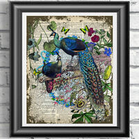 Peacocks Art print on dictionary book page, Vintage retro wall decor Peacock