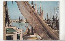 BF29937 riviera adriatica barche de pesca italy ship  front/back image