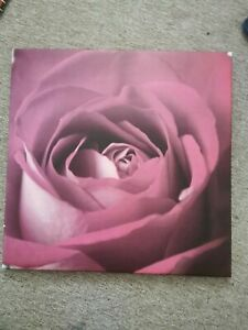 Rose Flower Canvas Print Wall Art. Picture Framed And Ready To Hang