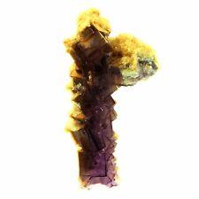 Fluorite Stalactite. 540.0 ct. Weishan Mine, Shandong, Chine