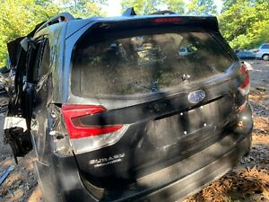 2019 2020 Subaru Forester Trunk Lid Deck Tailgate Hatch