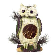 Natural Owl Bird House