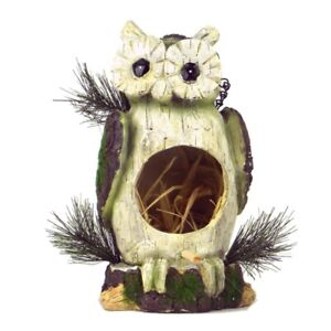 Natural Owl Bird House