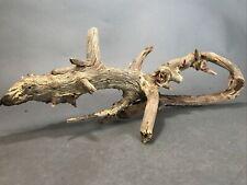 """New listing Natural Driftwood Fish Aquarium Aquascapes Root Reptile Tank Terrarium Large 21"""""""