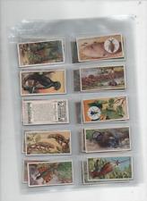 cigarette cards wonders of nature 1924 full set