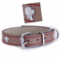 Luxury Leather Dog Collar 3 Different Sizes With 8 Different Design Badge