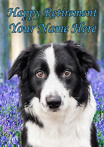 Border Collie  Happy Retirement A5 Personalised Greeting Card  PIDBOR1