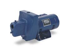 SNE-L 1 HP Sta-Rite Shallow Well Water Pump