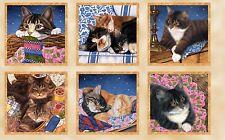"Sew Curious Cats & Kitten 24"" Panel Cotton Wilmington Prints Fabric #6089"