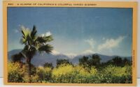 A Glimpse of California's Colorful Varied Scenery Postcard A5