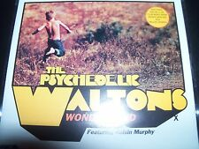 The Psychedelic Waltons FT Roisin Murphy Wonderland AU CD Single – Like New