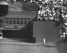 New York Giants WILLIE MAYS Glossy 11x14 Photo 1954 World Series Print The Catch