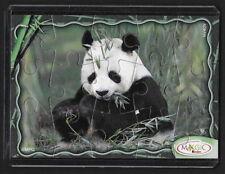 Jouet kinder puzzle 2D Panda NV409 France 2008 + étui de protection +BPZ