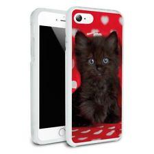 Black Ragdoll Tiffany Cat Hearts Love Hybrid Rubber Bumper iPhone 7 and 7 Plus