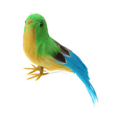 Fake Artificial Bird Realistic Taxidermy Natural Home Decor Toy Gift 12cm #3