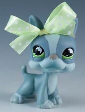 Littlest Pet Shop Boston Terrier #857 Gray With Green Eyes