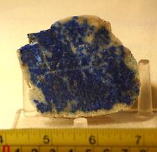 Russian Lapis Lazuli  lapidary heel slab 2.4 oz  (75 grams)