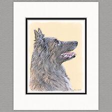 Belgian Tervuren Dog Original Art Print 8x10 Matted to 11x14