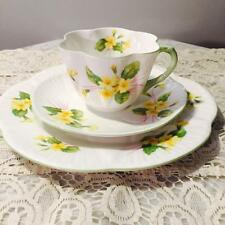 "GORGEOUS ""SHELLEY"" DAINTY TRIO CUP SAUCER & CAKE PLATE ~PRIMROSE~"