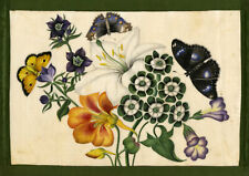 Flowers & Butterflies – Original c.1828 painting on Chinese pith