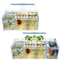 Acquario LED Acrilico Betta Fish Tank Set Mini Filtri per Pompa Dell'Acqua  E5N4