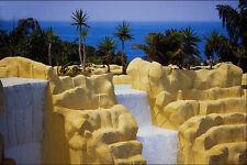 654027 Loro Park Tenerife A4 Foto Impresión