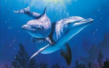 DOLPHIN & OCEAN INSPIRED MUSIC CD, NATURAL SOUNDS, NATURE, TRANQUIL RELAXATION