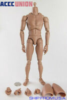 1/6 Male Figure Body Narrow Shoulder Ver 4.0 For Hot Toy TTM18 TTM19 TTM21 U.S.A