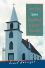 Are You Sure You Want A Small Church? by Jewel Umberger (2008, Paperback)