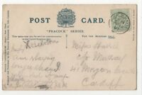 Penzance 10 Apr 1907 Single Ring Postmark Cornwall 843b