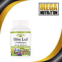 Natural Factors Olive Leaf Extract 500mg 90 Capsules | Supports Immune System