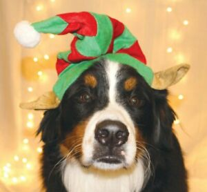 NEW Outward Hound Elf Hat Red Green Dog Holiday Pet Christmas (Choose M or L)