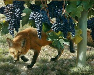 Carl Brenders  Between The Vines - Red Fox  S & N Limited Edition With COA