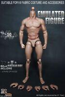 ZC Toys 1:6 Scale Muscular Male 12inch Action Figure Body Fit HT Head Sculpt