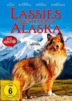 Lassies Abenteuer in Alaska                                            DVD   202