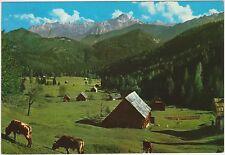 ALPE DI UGOVIZZA - VAL RAUNA - MALBORGHETTO VALBRUNA (UDINE) 1972