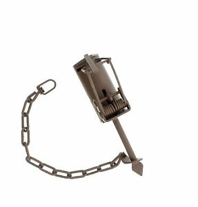 12 - Duke DP Powder Coated Dog Proof Coon Traps Trapping Raccoon  trap new sale
