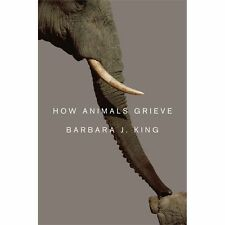 How Animals Grieve by Barbara J. King (Hardcover)