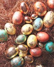 5 Colores Brillo Perla Tinte + Oro Pintura Decoración Pintura gelatina de huevos de Pascua