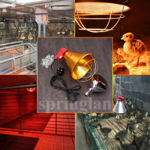 Heat Lamp Poultry, Puppies, Dog, Kittens, Piglets, Reptile 275w REDBulb Included