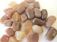 Coffee Moonstone Qty 1 Tumbled Stone 25mm Healing Crystal by Cisco Traders