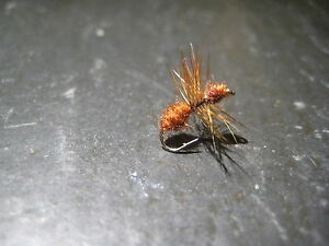 6 Size 20 CINNAMON ANT PREMIUM LIGAS FLY FISHING FLIES