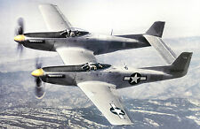 P-82-E  Twin Mustang 78in  Giant Scale RC Model AIrplane Printed Plans